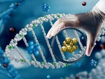 我国研发抗癌新药  开启免疫治疗新模式
