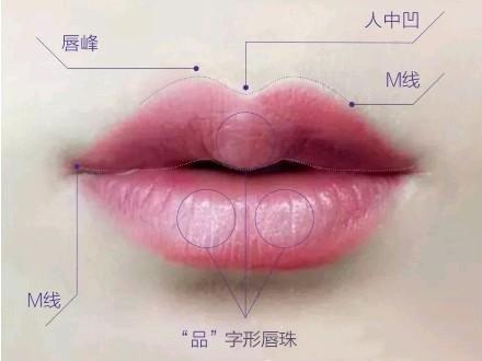 什么是唇珠?那有唇珠和无唇珠有什么区别?