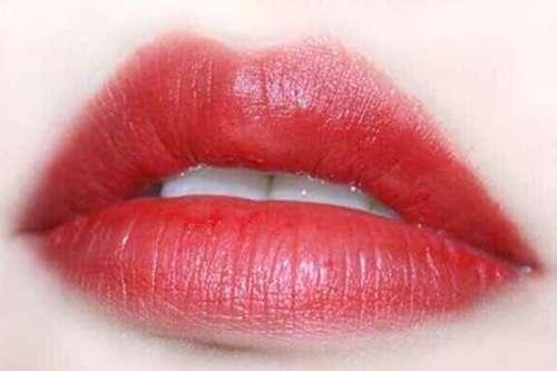 唇红缘有什么样的特征?有什么作用?