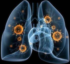 治疗新冠肺炎,中药为啥有作用