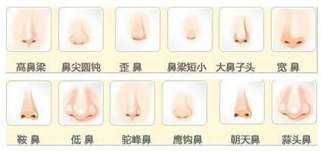 美雕玲珑俏鼻术,打造专属亚洲人的俏挺美鼻!