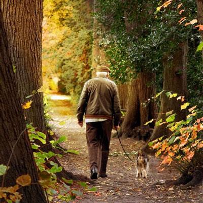 老人走路锻炼预防老年痴呆吗