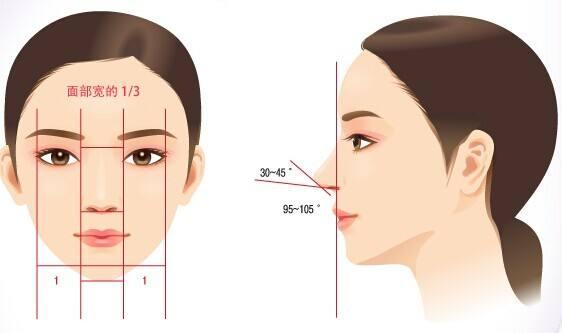 为什么要选择自体肋软骨隆鼻?