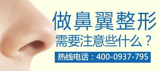 鼻翼缺损矫正的修复原则