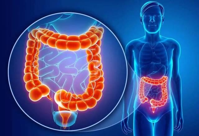 维生素D对抗结肠癌