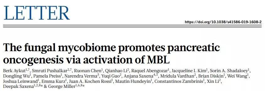 高等学术期刊《自然》发表胰腺癌发展与真菌有关系