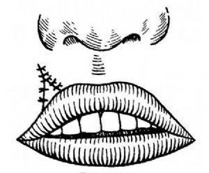 唇缺损修复术