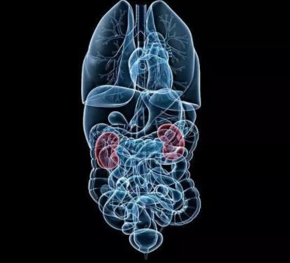 久坐不动会诱发结肠癌?关于结肠癌的5个常见问答