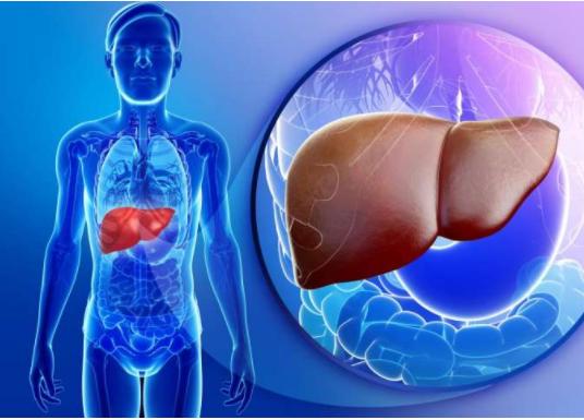 如何检查诊断肝癌?4种常用方法简单可行
