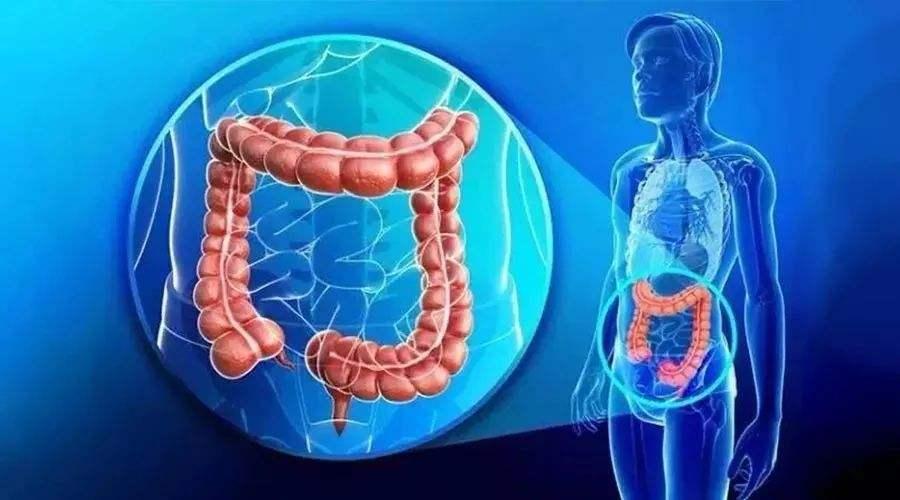 都2020年了,再不注意直肠癌就晚了:什么是直肠癌?