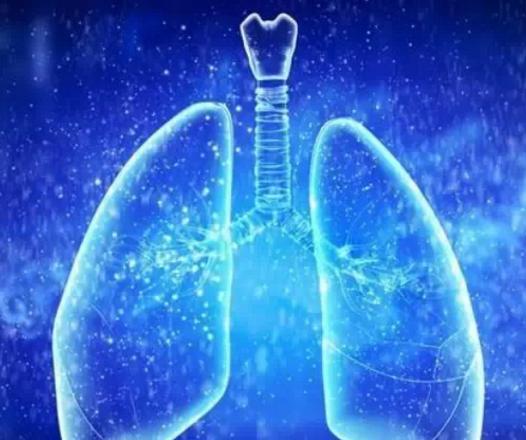 癌肿在成长过程中沿支气管壁延伸扩展