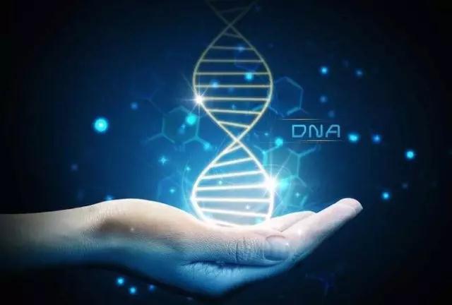 华大基因联手阿里云打破世界纪录:仅用15分钟完成个人全基因组测序