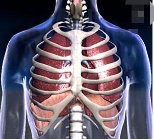 外科手术能治疗肺癌?什么样的病人才适合?