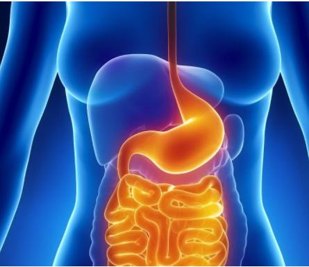 胃癌术后化疗为什么会出现呕吐等不良反应?该如何治疗?