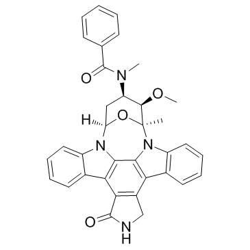 非典型蛋白激酶C在肿瘤中的双重作用