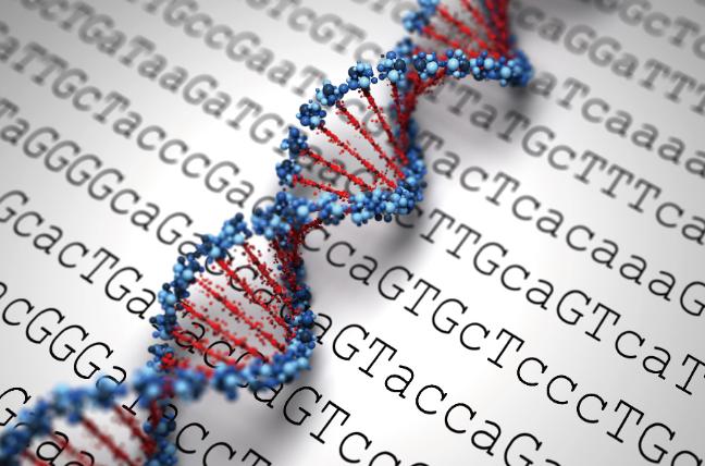 阿 尔 茨 海 默 病 遗 传 学 的 复 合 模 型