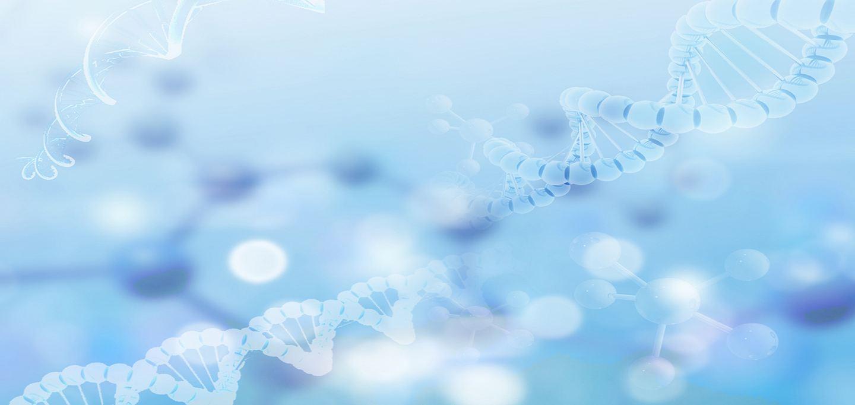 研究发现新抗衰老基因,神经递质可改善行为能力