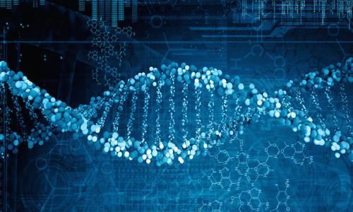 英 国 有 研 究 发 现 精 神 分 裂 症 基 因 存 在 罕 见 变 体