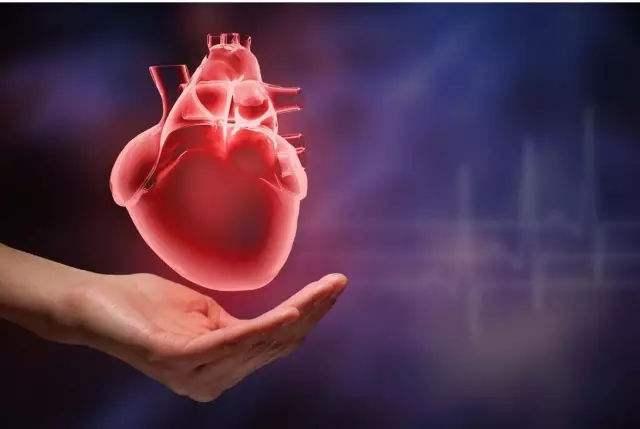 妊娠期糖尿病会增加后代早发心血管疾病的风险