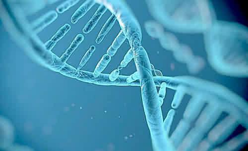基 因 检 测 与 p e t c t 检 查 有 什 么 区 别 ?