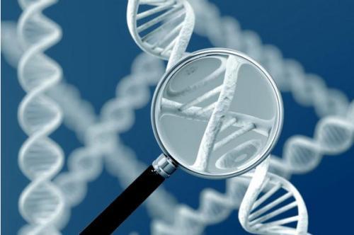 磷酸化tau阶段变化与阿尔茨海默症阶段演变相关