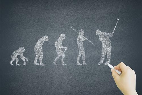 人类进化选择,膝关节软骨细胞影响骨关节炎风险
