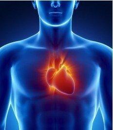人工智能实现对心脏功能的评估成果