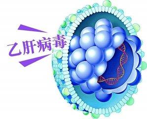 乙型肝炎携带会发展成为肝癌吗?