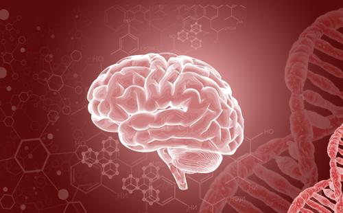 得了脑肿瘤吃什么比较好?