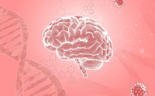 什么是脑肿瘤?脑肿瘤饮食怎么吃?