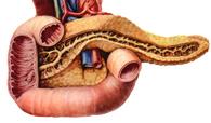 十二指肠巨大间质瘤成功切除