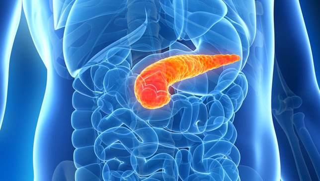 Nature子刊:研究人员提出重新分类胰腺癌