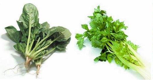 芹菜、菠菜、蘑菇等食物,二次加热后会产生致癌物吗?